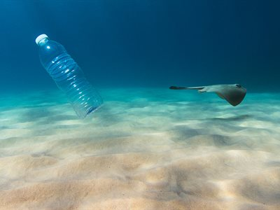 Make your own plastics pledge to help save the ocean