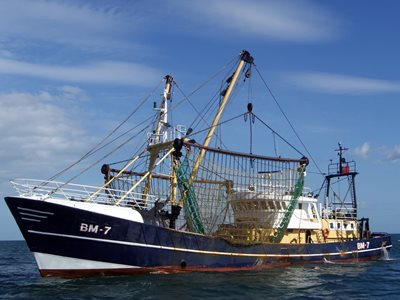 COVID-19 impact on fishing industry put to Government by University of Hull professor